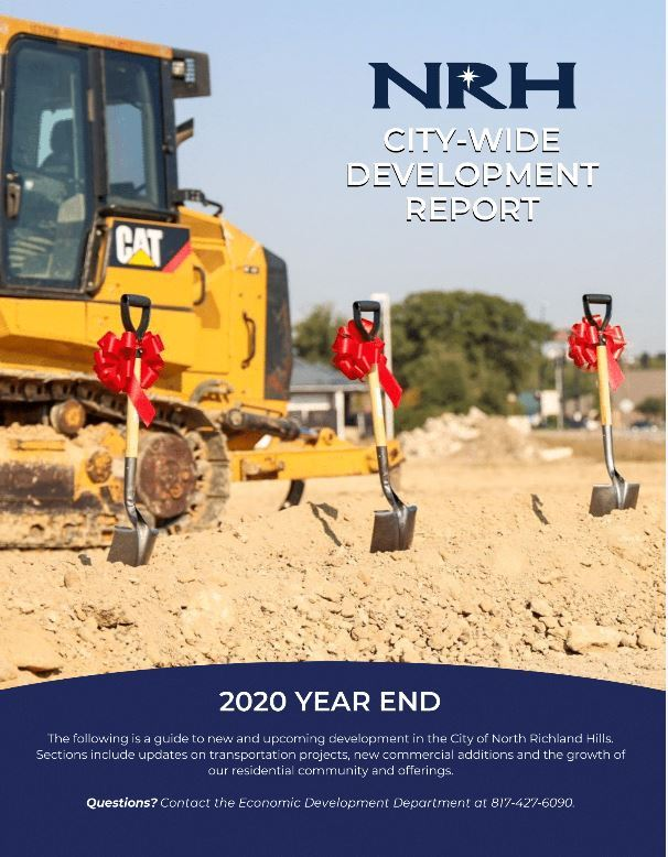 2020 Dev Report Cover